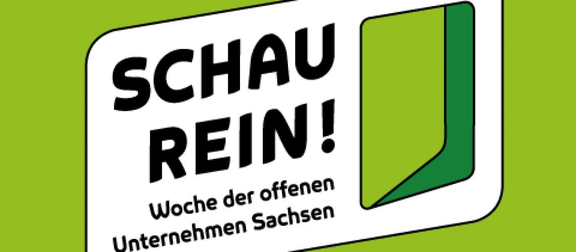 schau-rein-2019-480